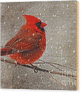 Cardinal In Snow Wood Print by Lois Bryan