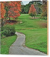 Cart Path Wood Print by Frozen in Time Fine Art Photography