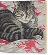 Cat On Quilt  Wood Print by Anne Robinson