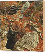 Cave Wood Print by Billy Beasley