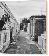 Cemetery Departed Wood Print by John Rizzuto