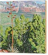 Century Plant - Sedona Wood Print by Steve Simon