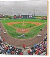 Champion Stadium II Wood Print by C H Apperson