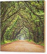 Charleston Sc Edisto Island - Botany Bay Road Wood Print by Dave Allen