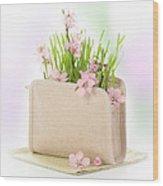 Cherry Blossom Wood Print by Amanda Elwell