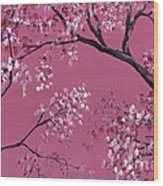 Cherry Blossoms  Wood Print by Darice Machel McGuire