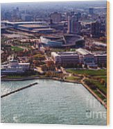 Chicago Museum Park Wood Print by Thomas Woolworth