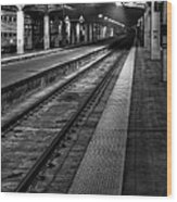Chicago Union Station Wood Print by Scott Norris