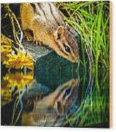 Chipmunk Reflection Wood Print by Bob Orsillo