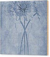 Chrysanthemum Cyanotype Wood Print by John Edwards