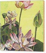 Citron Lotus 1 Wood Print by Debbie DeWitt