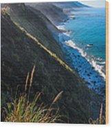 Cliff Grass At Big Sur Wood Print by Adam Pender