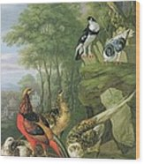 Cock Pheasant Hen Pheasant And Chicks And Other Birds In A Classical Landscape Wood Print by Pieter Casteels