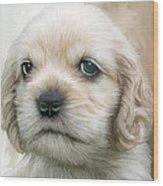 Cocker Pup Portrait Wood Print by Carol Cavalaris
