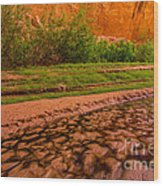 Colorful Streambed - Coyote Gulch - Utah Wood Print by Gary Whitton