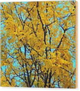 Colors Of Fall - Smatter Wood Print by Deborah  Crew-Johnson
