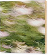 Coneflowers In The Breeze Wood Print by Paul W Faust -  Impressions of Light