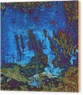 Coral Reef Wood Print by Tom Druin