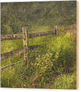 Country - Fence - County Border  Wood Print by Mike Savad