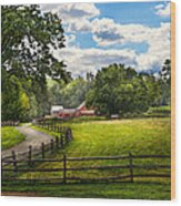 Country - The Pasture  Wood Print by Mike Savad