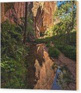 Coyote Gulch Canyon Reflection - Utah Wood Print by Gary Whitton