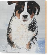 Crazy For Snow Wood Print by Liane Weyers