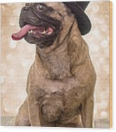 Crazy Top Dog Wood Print by Edward Fielding