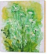 Daisies Wood Print by Zaira Dzhaubaeva