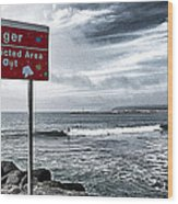 Danger Restricted Area Keep Out Wood Print by Ron Regalado