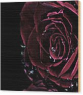 Dark Rose 2 Wood Print by Ann-Charlotte Fjaerevik