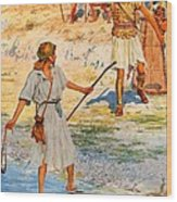 David And Goliath Wood Print by William Henry Margetson