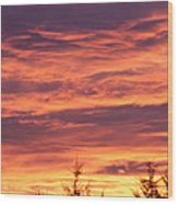 Day Awakening Wood Print by Robert  Torkomian