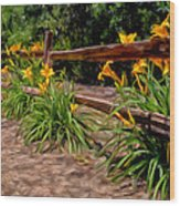 Day Lilies Wood Print by Michael Pickett