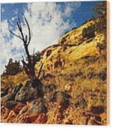 Dead Tree Against The Blue Sky Wood Print by Jeff Swan
