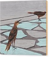 Death Valley Birds Wood Print by Anastasiya Malakhova