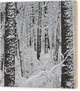 Deep Snow In The Forest Wood Print by Lynn-Marie Gildersleeve