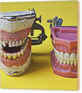 Dental Models Wood Print by Garry Gay