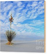 Desert Beauty White Sands New Mexico Wood Print by Bob Christopher