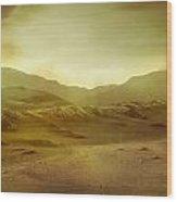 Desert Wood Print by Brett Pfister
