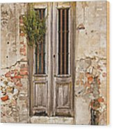 Dilapidated Brown Wood Door Of Portugal Wood Print by David Letts