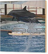 Dolphin Show - National Aquarium In Baltimore Md - 1212249 Wood Print by DC Photographer