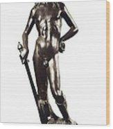 Donatellodonato De Betto Bardicalled Wood Print by Everett