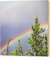 Double Rainbow Sky Wood Print by Destiny  Storm