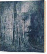 Dreamforest Wood Print by Gun Legler