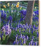 Dreaming Of Spring Wood Print by Carol Groenen