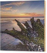 Driftwood On The Beach Wood Print by Debra and Dave Vanderlaan