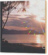 Dunk Island Australia Wood Print by Jerome Stumphauzer