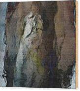 Dwelling In Her Dark Space Wood Print by Gun Legler