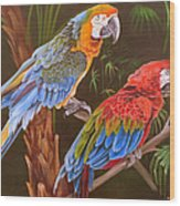 Dynamic Duo Wood Print by Phyllis Beiser