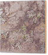 Early Fall Wood Print by Michele Myers